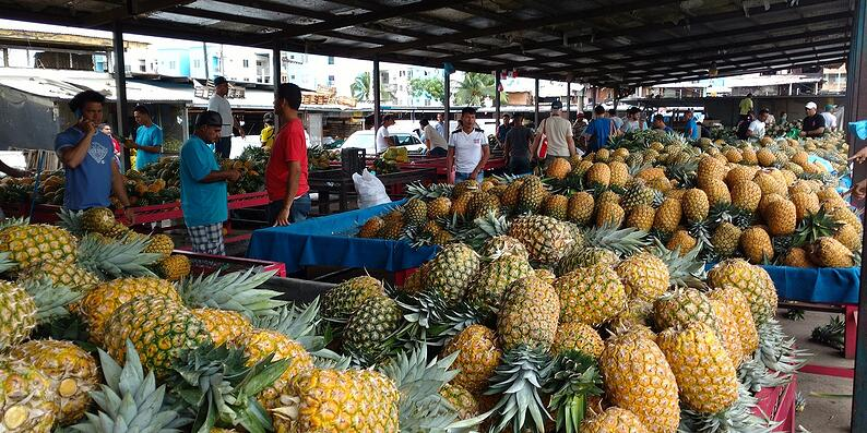 Cost-of-living-in-Panama-Pineapples